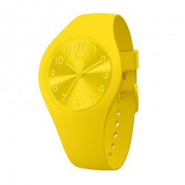 Montre Ice Watch, Colour